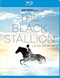 The Black Stallion / L'Étalon Noir (Bilingual) [Blu-ray]