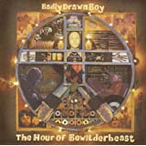 The Hour of Bewilderbeast [Vinyl]