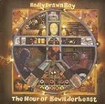 The Hour of Bewilderbeast (Vinyl)