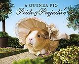 img - for A Guinea Pig Pride & Prejudice book / textbook / text book