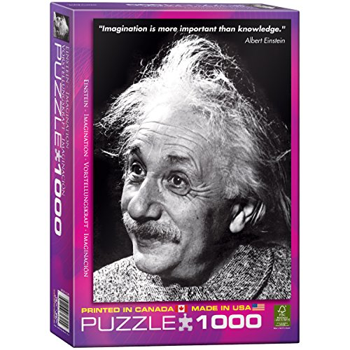 EuroGraphics Einstein (Imagination) 1000 Piece Puzzle