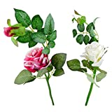 Thefancymart Artificial Rose Flower Plant Set Of 2 Sticks Style Code-88