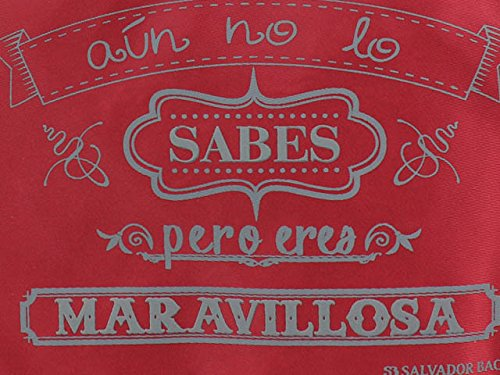 Salvador Bachiller - Organisateur - Grafiti XV 50203R - Rouge