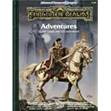Forgotten Realms Adventuresby Jeff Grubb