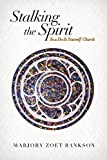 img - for Stalking the Spirit: In a Do-It-Yourself Church book / textbook / text book