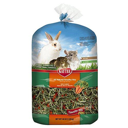Kaytee-Timothy-Hay-Plus-Carrots-Pet-Treat