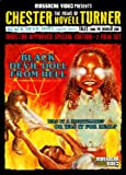 Black Devil Doll From Hell / Tales From the [DVD] [Region 1] [US Import] [NTSC]