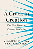 #10: A Crack in Creation