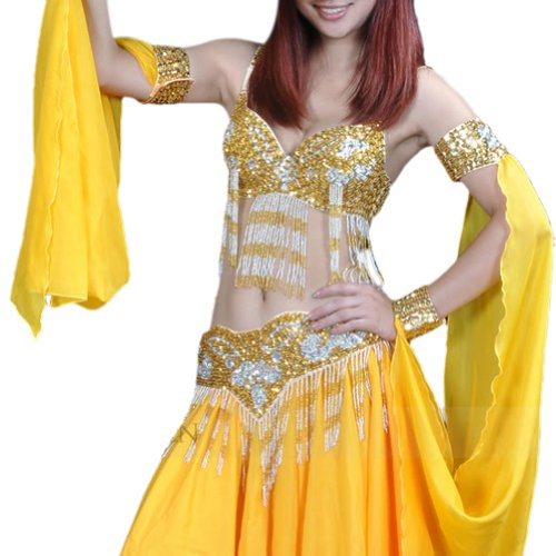 BellyLady Professional Belly Dancing Costume Set, Fringe Sequined Bra & Waist Belt