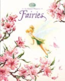 The Hidden World of Fairies image
