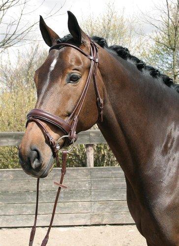 Harry's Horse Schwedische Trense Rund braun pony