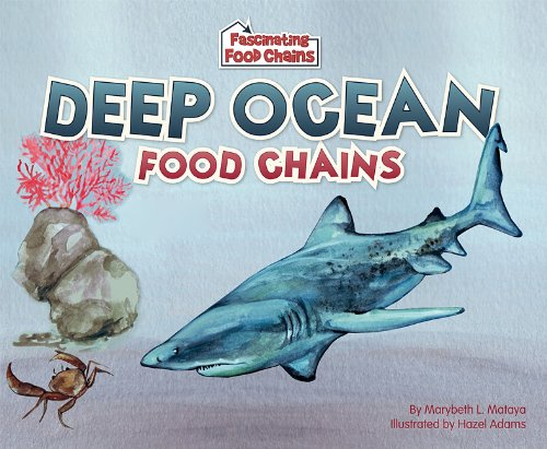 food chain ocean. Deep Ocean Food Chains
