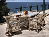 Patio Outdoor Lloyd Flanders Vineyard Wicker Casual Dining Set with Swivel Chair