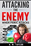 Attacking The Enemy: When Panic Attacks (panic attack, panic disorder, anxiety attacks, fear, phobias, depression, mental health, mental illness, self-help)