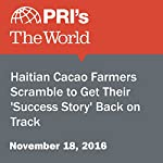 Haitian Cacao Farmers Scramble to Get Their 'Success Story' Back on Track | Amy Bracken