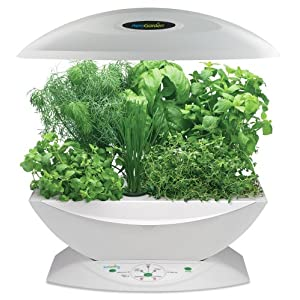 """AeroGarden 900320-1200 6 with Gourmet Herb Seed Kit, White (Discontinued by Manufacturer) (Lawn & Patio)By AeroGrow        Click for more info    Customer Rating:     First tagged """"hydroponic"""" by Terell W. Brown"""