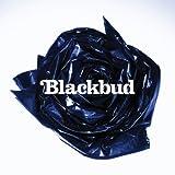 Blackbud