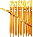 Raqpak Tent Stakes Aluminum Pegs 10 Pack with Pouch