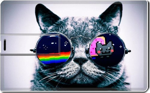 Nyan Cat Glasses Funny Kitten 4G Usb Flash Drive 2.0 Memory Stick Luxlady Usb Credit Card Size Customized Support Services Ready Windows Mac Storage External front-1034542
