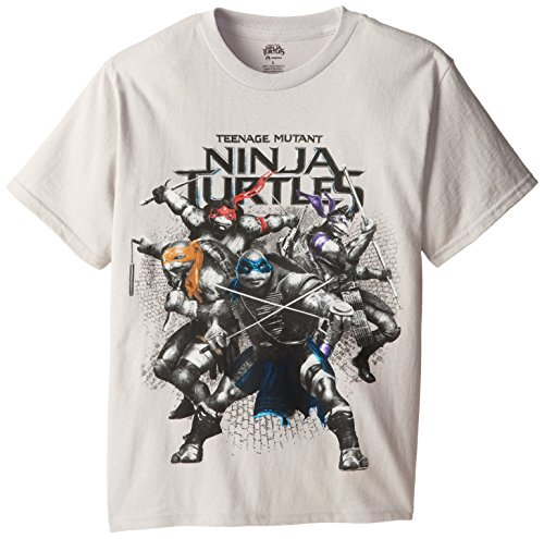 Teenage Mutant Ninja Turtles Big Boys' TMNT Movie Group Stance Tee