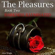 Darkness Illuminated: The Pleasures, Book 2 | Livre audio Auteur(s) : Alice Wright Narrateur(s) : Amanda Hendricks