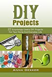 DIY Projects: 22 Surprisingly Useful DIY Projects For Your Home And Everyday Life (DIY Projects, diy household hacks, diy Speed Cleaning)