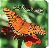 Busy, Busy, Butterfly (Rourke Board Books)