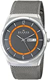 "Skagen Men's SKW6007 ""Melbye"" Titanium Watch with Mesh Band"