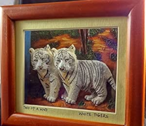 Shadowbox - Twin Rare White Bengal Tigers -3 Dimensional Vision Decorative Picture Box