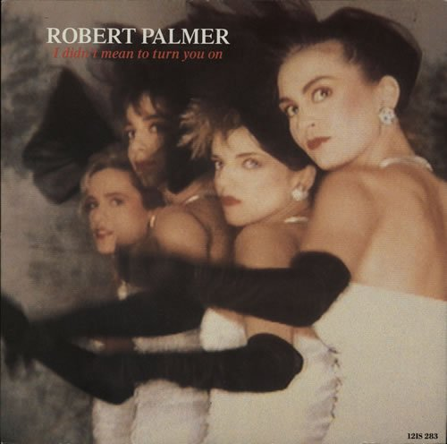 Robert Palmer - I Didnt Mean To Turn You On - Lyrics2You