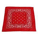 Paisley & Graphic Design Bandana Scarf 12-Pack 100% Polyester