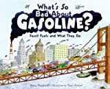 Whats So Bad About Gasoline? Fossil Fuels And What They Do (Lets-Read-And-Find-Out Science Books) Whats So Bad About Gasoline?