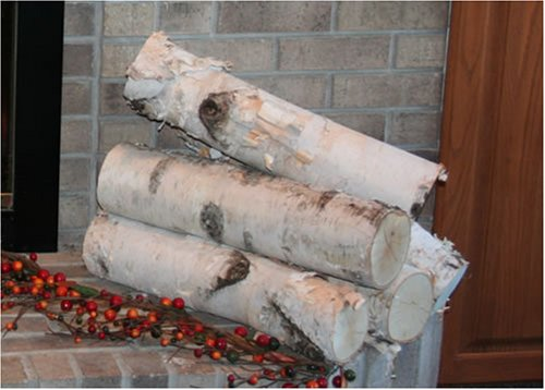 Check Out This Large Birch Fireplace Log Set