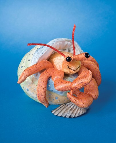 Henry Hermit Crab with Shell 5