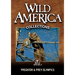 Predator &amp; Prey Olympics Collection