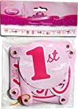 Disney Princess 1st Birthday Party Banner (8' x 5