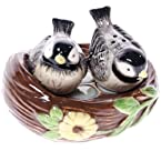 Birds Salt & Pepper Set