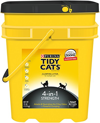 Tidy Cats Cat Litter, Clumping, 4-in-1 Strength, 35-Pound Pail, Pack of