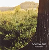 Noble Beast Andrew Bird