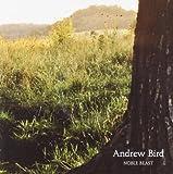 Noble Beast Andrew Bird