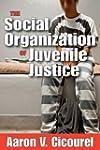 The Social Organization of Juvenile J...