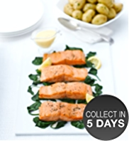 4 Wild Alaskan Salmon Fillets
