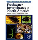 [ Field Guide to Freshwater Invertebrates of North America (Field Guide To... (Academic Press)) [ FIELD GUIDE TO FRESHWATER INVERTEBRATES OF NORTH AMERICA (FIELD GUIDE TO... (ACADEMIC PRESS)) ] By Thorp, James H ( Author )Nov-29-2010 Paperback