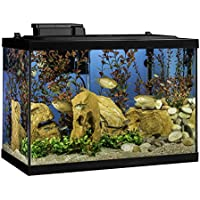 25% off Aquariums and Supplies at Amazon.com