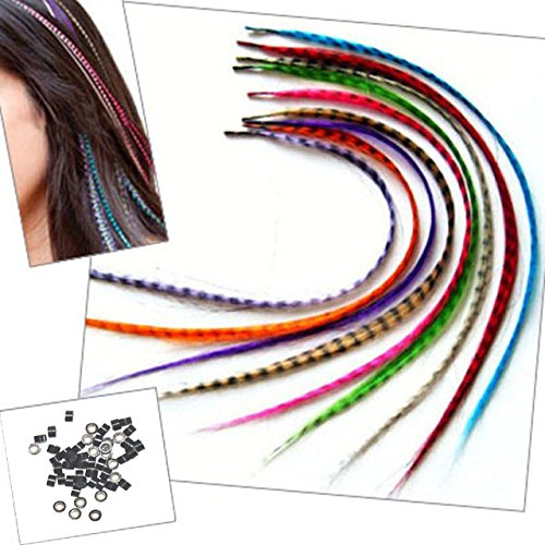 Sunwell Feather Hair Extension Kit with 39 Synthetic Feathers, 40 Beads, Pliers and Hook (Feather Clips compare prices)