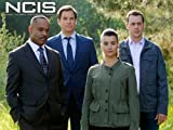 Ncis: Damned If You Do