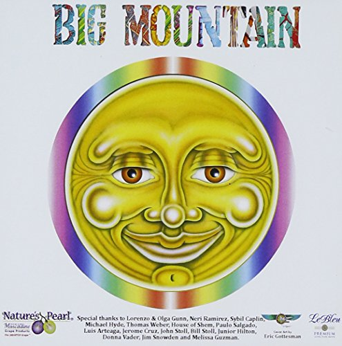 Big Mountain - Versions Undercover - Zortam Music