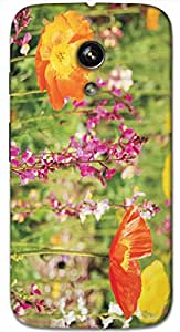 Timpax protective Armor Hard Bumper Back Case Cover. Multicolor printed on 3 Dimensional case with latest & finest graphic design art. Compatible with only Motorola Moto - G-1- 1st Gen. Design No :TDZ-21228