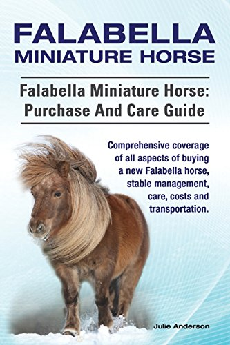 falabella-miniature-horse-falabella-miniature-horse-purchase-and-care-guide-comprehensive-coverage-o