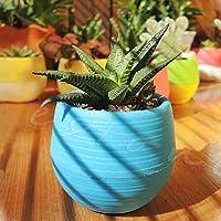 1Pc 7*6.5CM Cute Round Home Garden Office Decor Planter Plastic Plant Flower Pot